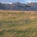 Prairie in South Dakota