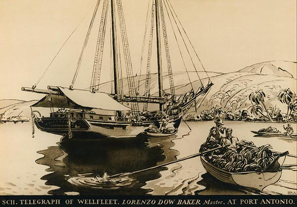 Baker's Schooner Telegraph at Port Antonio in 1870, illustration by Edward A. Wilson